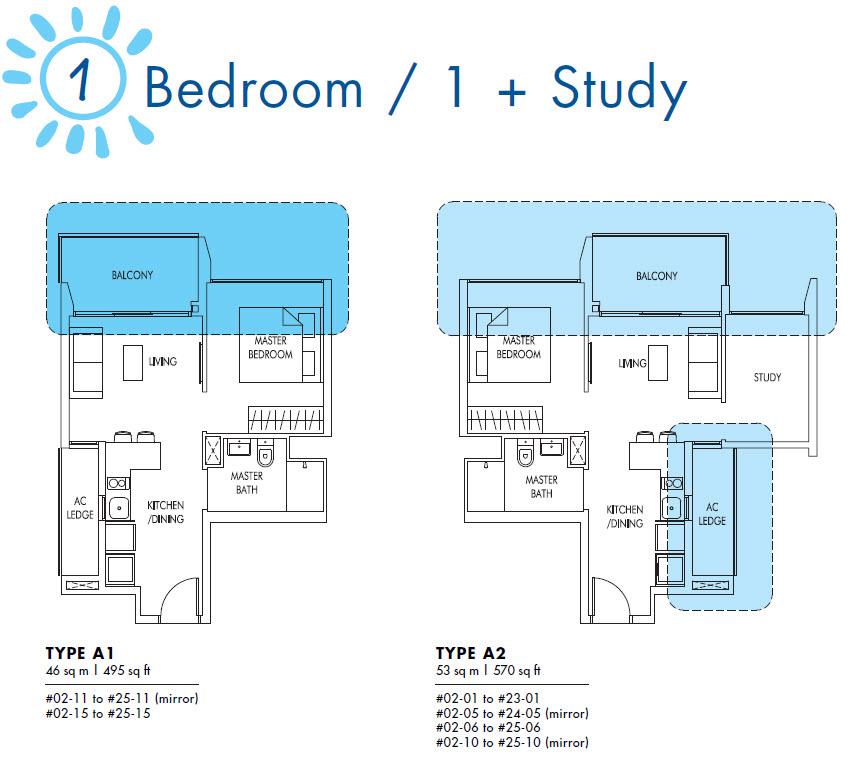 1 + Study
